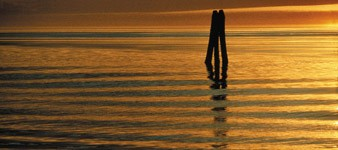 3. Biking in the great delta: from Venice to Ferrara
