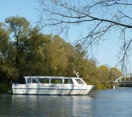 A trip in the Delta by motorboat