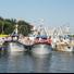 Fiesta tradicional , una procesión en el mar de barcas de pescadores, con animación y parque de atracciones.