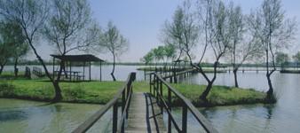 8. Promenade à vélo d'une réserve naturelle à l'autre. D'Ostellato à Argenta