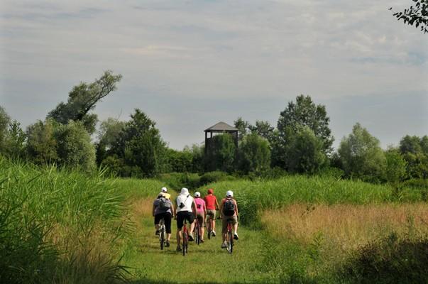 9. Les lagunes du Parc du Delta du Pô. D'Argenta à Comacchio