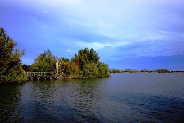 Anse Vallive - Parc du Delta du Pô