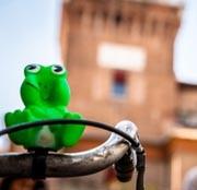 Vedi tutte le proposte per vivere al meglio il tuo soggiorno a Ferrara e nella sua provincia!
