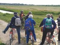 Da Volano alla scoperta del Delta in Bicicletta