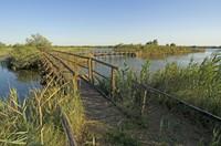 E' una piccola valle salmastra di 64 ettari. Importante relitto vallivo di un più vasto complesso di lagune costiere, che circondava l'Abbazia di Pomposa, è delimitata alle estremità da due antichi casoni di valle...