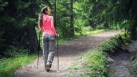 Nordic walking essential skills, in Pineta