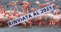 Fiera Internazionale del Birdwatching e del Turismo Naturalistico 2020