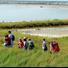 Escursioni a piedi con osservazione dell'avifauna ed approfondimento del tradizionale processo di produzione del sale