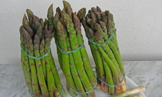 Asparago verde di Altedo - IGP