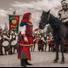 La Giostra del Borgo festeggia quest'anno la sua XVII edizione: presso l'Ippodromo Comunale di Ferrara, dame, cavalieri, musici, cuochi e mangiafuoco vi aspettano per una grande festa