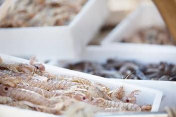 Mercato del pesce  - Goro