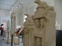 Il museo presenta l'eccezionale ritrovamento archeologico avvenuto nell'autunno del 2002 nella tenuta di S. Caterina, a fianco alla Delizia Estense del Verginese.