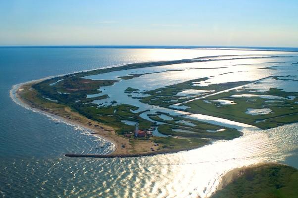 Area del Parco del delta del Po - Stazione 1