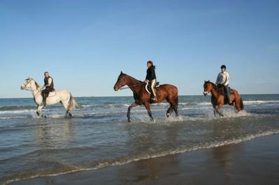 A cavallo nel delta