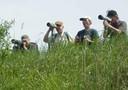 Corsi ed escursioni di birdwatching
